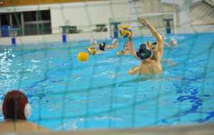 Water Polo CNB - Moulins 2